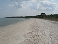 Daufuskie Island - shell beach.jpg