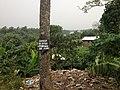Deïdo Douala January 2013 44.JPG
