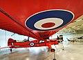 De Havilland DHC-2 Beaver. (50644005971).jpg