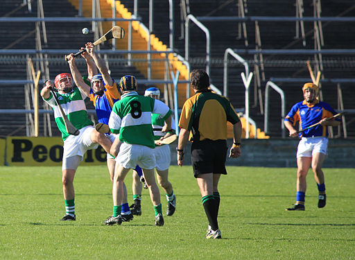 Defence Forces Vs BOI Hurling (105) (5117198877)