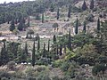 Delphi 066.jpg
