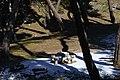 Descanso - panoramio (4).jpg