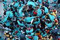 Diada castellera de Festa Major (3782986596).jpg