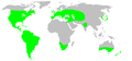 Distribution.anyphaenidae.1.png