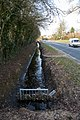 Ditch beside Allington Lane - geograph.org.uk - 1757200.jpg