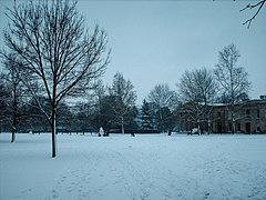 Downing College Paddock in snow 2 - Feb 2009.JPG