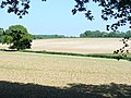 Downland by North Wood - geograph.org.uk - 1318684.jpg