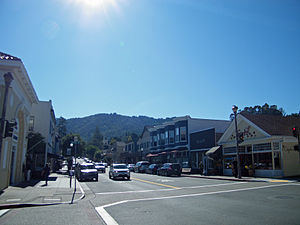Downtown Larkspur, California 2011 B - Stierch.jpg