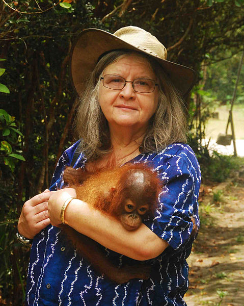 Simon Fraser University anthropologist, primatologist, conservationist, ethologist, professor Birute Galdikas, whose research and rescue of the world's endangered orangutans spans 40 years, plays a starring role in a major IMAX film documenting her work.