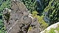 Drachenwand Klettersteig - panoramio (1).jpg