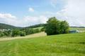 Drei-Eichen-bei-Kimbach Naturdenkmal Hessen Odenwaldkreis.png