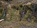 Dripping hillside - geograph.org.uk - 740813.jpg