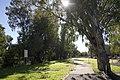 Dubbo NSW 2830, Australia - panoramio (151).jpg