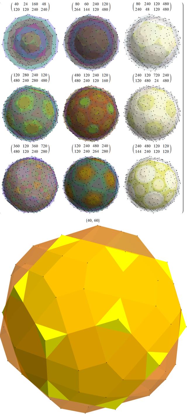 8 8 polytope   Wikiwand