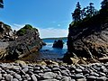 East Coast Trail (43984627322).jpg