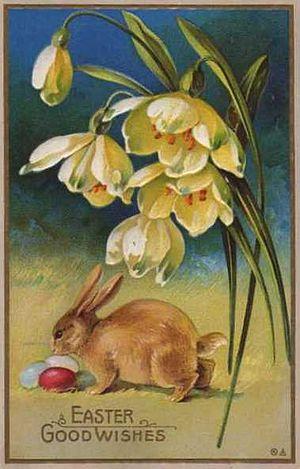 Easter postcard - Image: Easter Bunny Postcard 1900