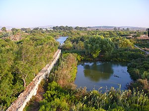 Tel Afek - General view of Ein Afek Crusader's dam and ponds