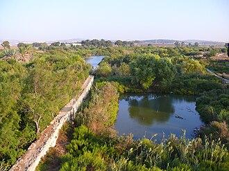 Tel Afek - General view of Ein Afek Crusader's dam and ponds