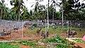 Emu Farm, Malapuram - panoramio.jpg