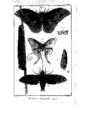 Encyclopedie volume 5-135.png