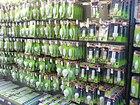 Energy saving light bulbs.JPG