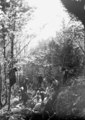 Enge Platzverhältnisse beim Schützengrabenbau im Wald - CH-BAR - 3240107.tif