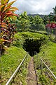 Entrance of Hana Lava tube (45741073621).jpg