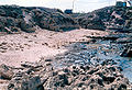 Eolianite beach Dor Israel.jpg