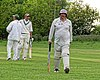 Epping Foresters CC v Abridge CC at Epping, Essex, England 011.jpg