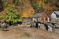 Escondido exposition, Zoo Jihlava, ostrichs.jpg