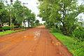Esteros del iberá, las rutas de acceso al lugar.JPG