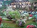 Euroflora 2006 03.jpg