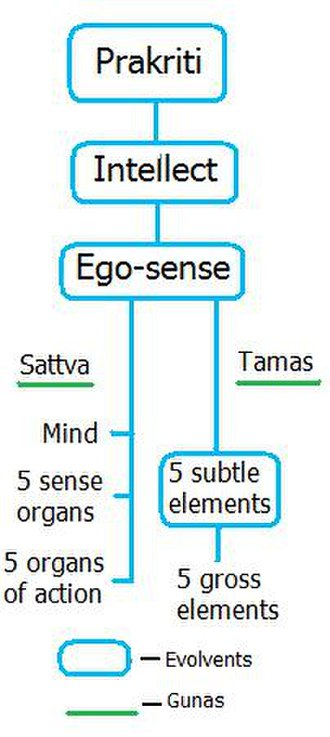 Samkhya - Elements in Samkhya philosophy