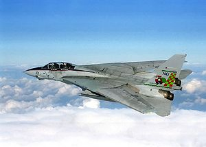 En Grumman F-14 Tomcat under Operation Southern Watch.