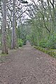 FP2 Montgomery Hill to Wirral UD boundary 3.jpg