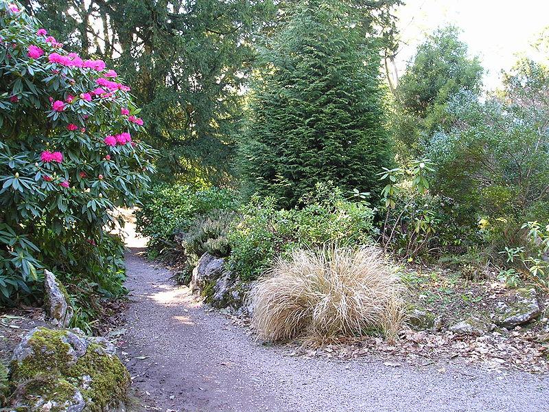 IRLANDA (fiestas paganas, filtros de amor y maldiciones) -En CONSTRUCCION- - Página 3 800px-FairyGlade