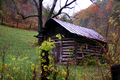 Fall-old-shed - West Virginia - ForestWander.png