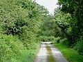 Farm lane near Tregaron, Ceredigion - geograph.org.uk - 1438801.jpg