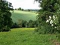 Farmland near Trimpley, Worcestershire - geograph.org.uk - 848958.jpg