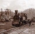 Ferroviarias en torno al tramo Valdivia – Los Lagos – Antilhue.jpg