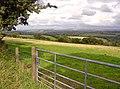 Field near Pant-y-llyn, Clydau - geograph.org.uk - 935194.jpg