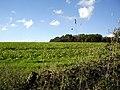 Field southeast of Spital Bushes - geograph.org.uk - 266557.jpg