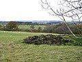 Fields at Longlea Farm - geograph.org.uk - 1043376.jpg