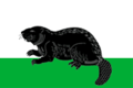 Flag of Bobrov (Voronezh oblast).png