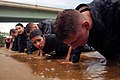 "Flickr - Official U.S. Navy Imagery - First-year midshipmen, or plebes, participate in the ""wet and sandy"" portion of the U.S. Naval Academy's annual Sea Trials..jpg"