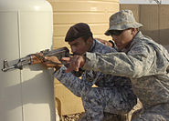 Flickr - The U.S. Army - Instructing National Police officers