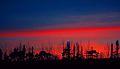 Flickr - law keven - A Sunset - Sandwich...-O).jpg