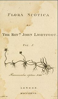 John Lightfoot (biologist) Priest, conchologist and botanist