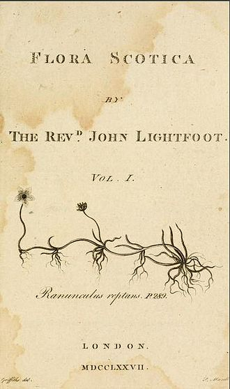 John Lightfoot (biologist) - Title page of Flora Scotica, 1777, by the Reverend John Lightfoot. Illustration of Ranunculus reptans drawn by Moses Griffiths, engraved by Peter Mazell.