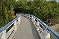 Footbridge - Sundarban Biodiversity and Interpretation Area - Taki - North 24 Parganas 2015-01-13 4657.JPG